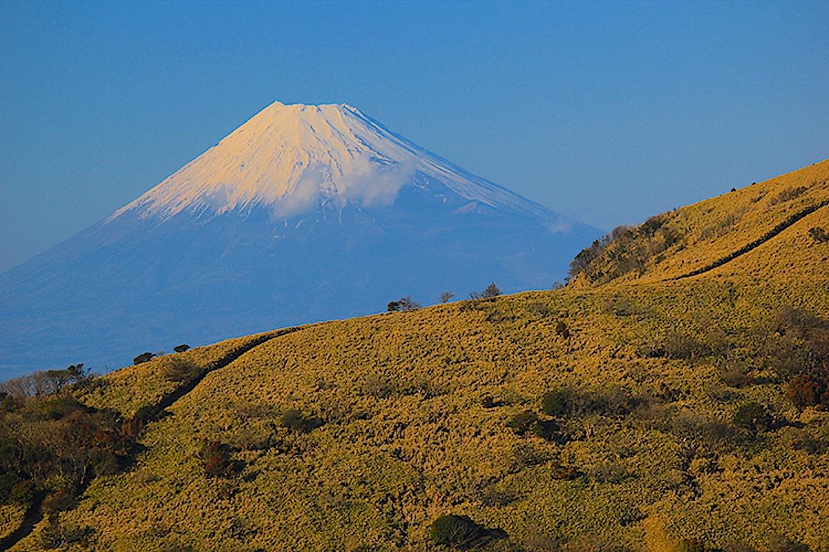 達磨山山頂から眺めた富士山