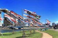 沼津市で『第32回こいのぼりフェスティバル』