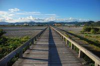 ギネス登録! 世界最長の木造人道橋「蓬莱橋」