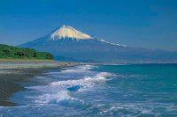 「一富士 二鷹 三茄子」は家康ゆかりの駿河の名産!