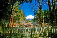 富士山信仰のルーツ! 山宮浅間神社に参拝
